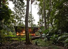 Cape Tribulation House by m3architecture / The Green Life <3