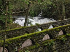 Old Stone Bridge Whatcom Falls Park Bellingham Washington - Whatcom Falls Park - Wikipedia, the free encyclopedia Bellingham Washington, Washington State, Evergreen State, Whidbey Island, Autumn Park, State Parks, Wa State, Oh The Places You'll Go, Pacific Northwest