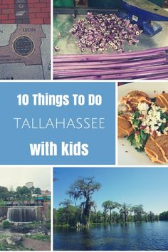 10 Things To Do in Tallahassee, Florida with Kids plus recommendations for kid-friendly dining and accommodations - Gone with the Family