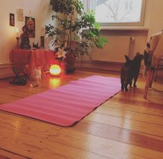 This glowingly warm yoga space with a happy little cat:   21 Meditation Spaces That Will Calm You The Fuck Down