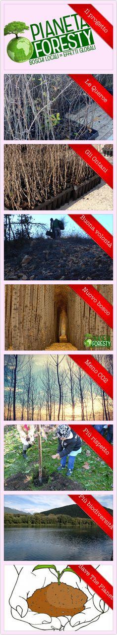 #pianetaforesty #foresty #savetheplanet #alberi