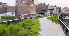 On Wednesday, June 8, Section 2 of the High Line is open to the public. Section 2 extends the High Line ten blocks north to West 30th Street, #highline #NYC