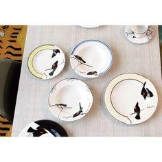 Birds - plates