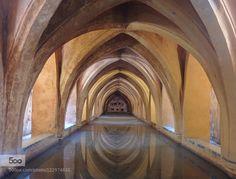 Alcázar of Seville by Nixir. Please Like http://fb.me/go4photos and Follow @go4fotos Thank You. :-)