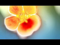 Abraham Hicks 2016 - So much of what you want is on it's way (new) - YouTube