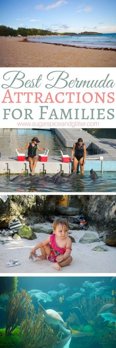 If Bermuda is on your family's bucket list, you need to check out this list of the Best Bermuda Attractions for families – some of them are free and some are one-of-a-kind experiences you will only find in Bermuda Source by playgroundpb Bermuda Vacations, Bermuda Travel, Bermuda Beaches, Vacation Spots, Vacation Ideas, Travel Advice, Travel Guides, Travel Tips, Travel Couple
