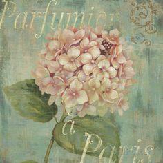 Vintage Fragrance IV Reproduction artistiques