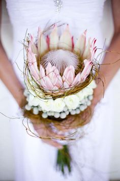 Loving this protea bouquet from our beach wedding today! Bouquet Bride, Protea Bouquet, Protea Flower, Hand Bouquet, Floral Bouquets, Protea Wedding, Beach Wedding Bouquets, Floral Wedding, Bouquet Wedding