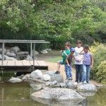 L.A. County Arboretum & Botanic Garden ~ A great place to discover nature in Los Angeles!