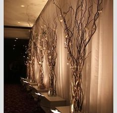 These are a must have for any wedding reception would also look great in the house afterwards! http://www.bliss-bridal-weddings.com/#!product/prd3/3016976351/5-sest-of-5-lighted-branches