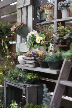 ガーデン&ガーデン掲載 小さな手作りガーデン