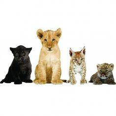 Muurstickers 'Safari Friends'