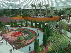 cool cooler insights gardens by the bay blossoms pic gardens by the
