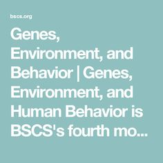Genes, Environment, and Behavior | Genes, Environment, and Human Behavior is BSCS's fourth module related to the Human Genome Project and includes background information on the methods and assumptions of behavioral genetics and student activities. Students are introduced to the complexity of the interactions of genetic, developmental, and environmental phenomena on human behaviors. It helps them realize that neither genes nor environment tells the whole story. Designed for grades 9-12.
