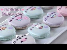 These Busheen Macarons will blow your friends away. Cute Desserts, Delicious Desserts, Dessert Recipes, Pusheen Cakes, Pusheen Birthday, Yummy Treats, Sweet Treats, Sushi Cake, Birthday Treats