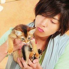 仔猫になりたい❤︎ #山下智久 #山P #tomohisayamashita