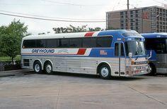 Greyhound Eagle # 7313 School Bus Rv, Retro Bus, Bus City, Luxury Bus, Bus Terminal, Ford Torino, Road Train, Bus Coach, Bus Station