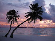 A sunset in the Maldives...absolutely beautiful