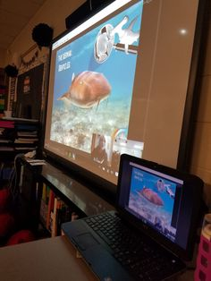 mshowells3rdgrade @RuthHowell3 Learning so many facts about sharks with @Sharks4Kids @SkypeClassroom @SpartanburgD5 #SkypeaThon