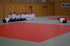 Aikidotraining in Wels - Budokan (Oberösterreich), Juni 2016 - Reshigi am Ende des Trainings