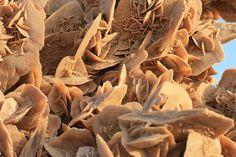"""""""La rosa del deserto è una formazione minerale comune nei paesi desertici. Di colore che sfuma dall'arancione al giallo-ocra è un aggregato di cristalli di gesso che si forma in ben determinate condizioni ambientali e climatiche. I depositi più famosi sono quelli del Sahara."""""""