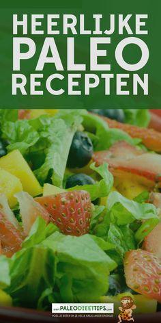 Heerlijke Paleo Recepten http://www.paleodieettips.com/kanaal/paleo-recepten/