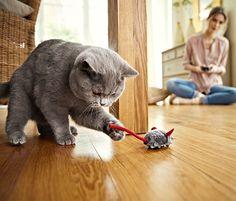 #Mysz zdalnie sterowana #tchibo