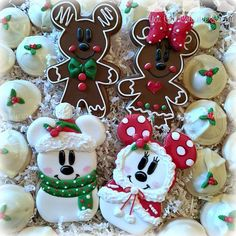 Holiday cookie platter season here we gooooooo!