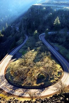 Winding Road in Oregon (by Daria Riabchenko)