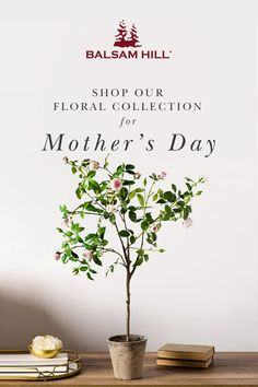 Surprise Mom on her special day with the elegant beauty of our faux flowers, potted plants, and wreaths. Enjoy Free Shipping sitewide!