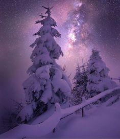 Starlight on the snow