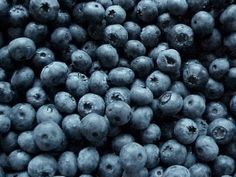 Late Night Snacking Can Be Healthy! Blueberry Avocado Smoothie, Blueberry Cheesecake, Blueberry Oatmeal, Blueberry Cake, Blueberry Danish, Blueberry Season, Blueberry Bushes, Dark Blue, Pura Vida