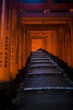 Fushimi Inari Taisha #Kyoto #Japan--orange and deepest purple-blue