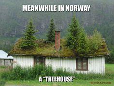 Meanwhile in Norway meme. Norwegian treehouse funny humor humorous From Norskarv.com.
