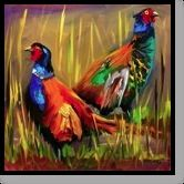pheasants on drugs