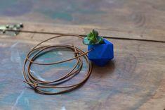 Wearable Planter by Colleen Jordan.