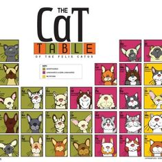 periodic table of catus cat facts cat people cute cats funny cats