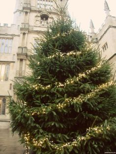 A visit to the Bodleian around Christmas.