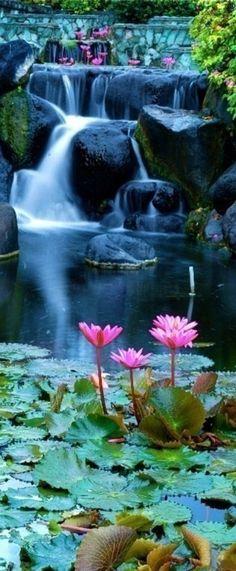 Lotus blossom waterfall in Bali, Indonesia