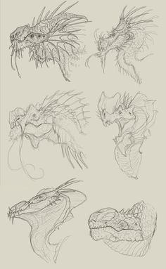 dragon heads - sketches by FabrizioDeRossi on DeviantArt