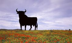 The huge black bull cut-outs silhouetted against the sky on many a Spanish hillside