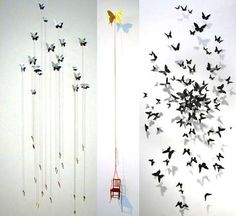 other variants of butterflies
