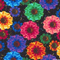 Radiance - Cosmic Flowers - Quilt Fabrics from www.eQuilter.com
