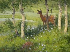 Flora and Fauna 30x40 Oberg.jpg (900×674)