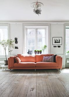 Simple Living Room With Natural Wood Floors Orange Coral Terracotta Sofa Large Windows Lots Of Light And Nice Use Green Plants