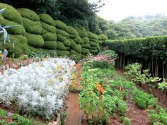 Oedo is Korea's only privately owned island, turned into a stunning botanical garden for the public to enjoy.