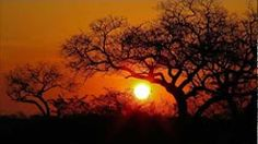 (3002) ISMAEL LO - AFRICA - YouTube