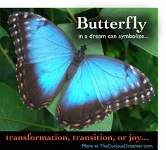 Dream meaning of a butterfly...  More at TheCuriousDreamer.  #DreamMeaning #DreamSymbols