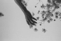 """Flowers."" Ida Patton  Shot on Ilford Delta 3200"