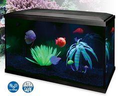Aquarium fluo : une touche deco originale